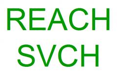 REACH认证要多少钱